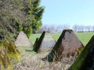 Battlefieldtour Hürtgenwald